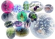 山口大学農学部生物資源環境科学
