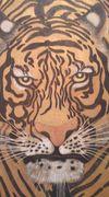 虎模様 < tiger print>