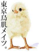 東京鳥肌メイツ。
