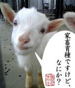 東京農業大学 家畜育種学研究室