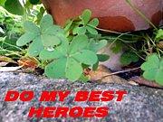 DO MY BEST HEROES