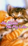 -No Music No My Life-