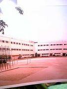 桃陽小学校