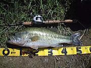 BASS釣りNo.1
