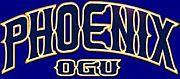 大阪学院大学バスケットボール部