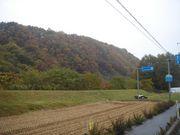 ポジティブリスト制と日本の農業