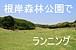根岸森林公園でランニング@横浜