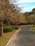 浜松☆公園好きの会