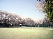 小北テニス部。