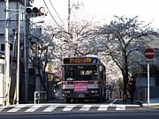 東急バス 都立01 成城学園前