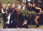 The Hot Licks except Dan Hicks