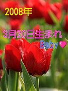 2008年3月20日生まれ