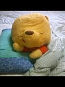 遅寝遅起き遅登校同盟