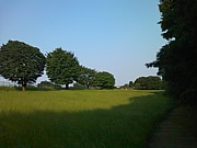 都立小宮公園