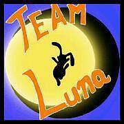 TEAM-Luna