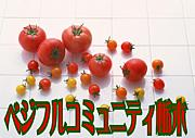 野菜ソムリエコミュニティ栃木
