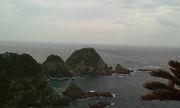 九州の釣果報告