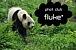 fluke*
