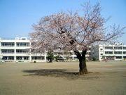 高麗川小・中学校