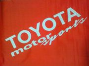 Team TOYOTA --- SuperGT