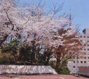 三田校1997年度卒