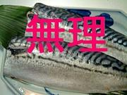 鯖の模様が怖い