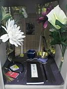 札幌北高校3年7組★一生青春