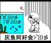 灰魚同好会>゚)))彡
