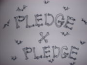 Pledge��Pledge
