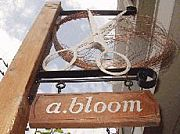 a.bloom