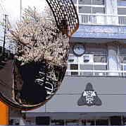 中新田高等学校(在校生)