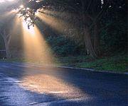光の射すところ