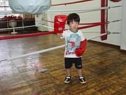 静岡格闘技武術ボクシング会