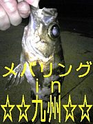 メバリングin九州