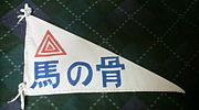 平沢進/P-MODEL@群馬&北関東