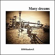 D50 ShadowZ