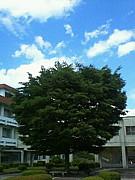 茨城県立大子清流高等学校