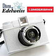 Diana+ Edelweiss