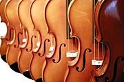 256人のバイオリニスト