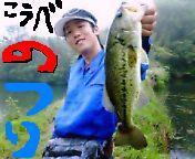神戸のルアーフィッシング