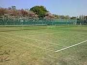 武蔵野テニス