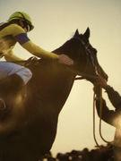 私的−競馬『超預感』