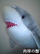 ホオジロザメに本気でなりたい!