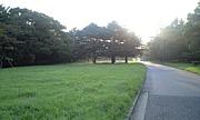ジョギング@代々木公園