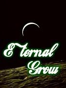 ☆Eternal  Grow☆
