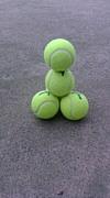 柏陽41期テニス部