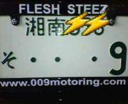 Flesh Steez c.c