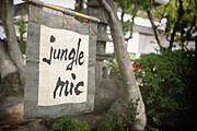 jungle mic