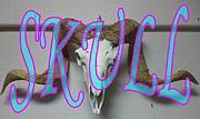 萌え★Skull 〜非人類系頭蓋骨〜