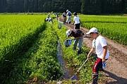 子ども農山漁村交流プロジェクト